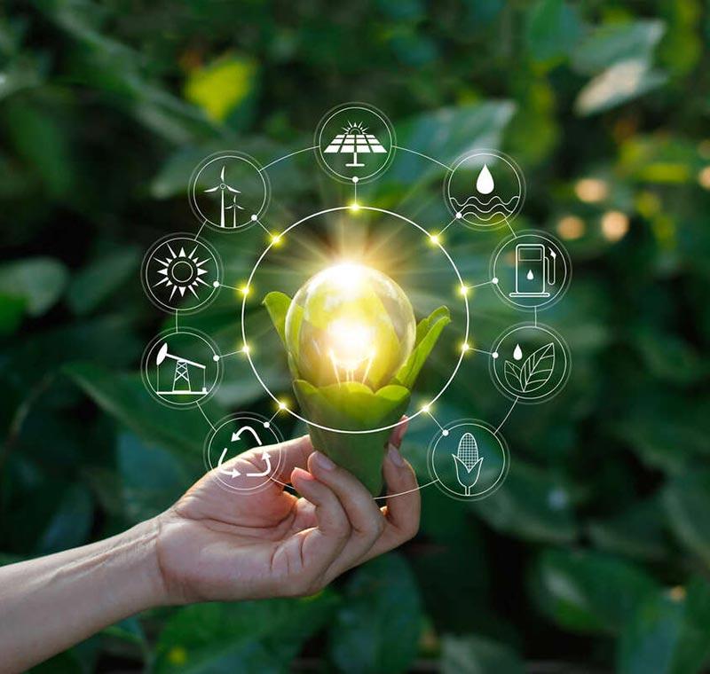 Le Previsioni sul Futuro dell'Energia | Winnerland